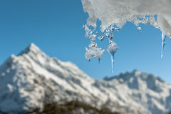 Icicle and distant mountain, New Zealand. Royalty Free Stock Image
