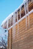 Icicle formed on the roof of a log house. Icicle formed on the roof of a house. The wooden house in the winter season of Siberia. The sharp icicles look so royalty free stock images