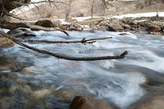 Icicle frozen on a branch of a tree near a mountain stream. The winter nature.  Stock Photos