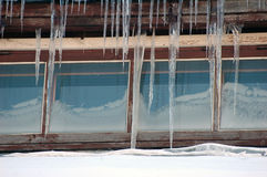 Icicle hanging Stock Images