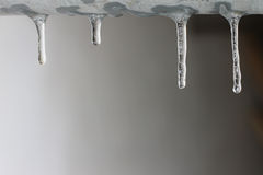 Icicle. Hanging from the gutter Stock Photos