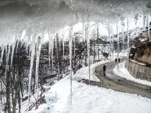 Icicle and snowy road Royalty Free Stock Images