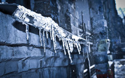 Icicle thaw Stock Image