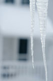 Icicle on top of roof with house in background Stock Images
