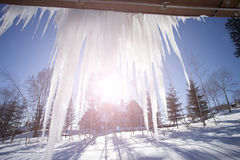 Icicle under the sunshine Stock Photo