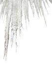 icicles изолировали белизну Стоковое фото RF