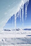 Icicles. Hanging from an iceberg on Antarctica