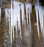 Icicles. Detail of icicles hanging from a rock Stock Photography