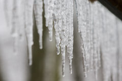 Icicles. A row of icicles hanging down from a roof with selective focus Stock Photos