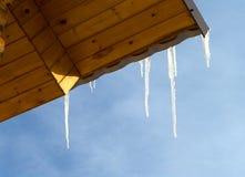 icicles стоковые фото