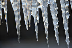 Icicles. White lit icicles on a back background Royalty Free Stock Image