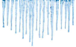 Icicles. Melting Icicles isolated with clipping path on white background stock photo