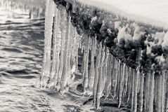 icicles Стоковое Изображение