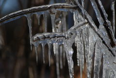 Icicles. Flying Angels These icicles formed late in the winter time. The shapes were formed because the temperature dropped over night causing rapid freezing stock photography