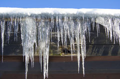 Free Icicles Royalty Free Stock Photo - 33187565