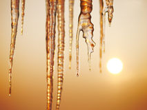 Free Icicles Royalty Free Stock Image - 50119546