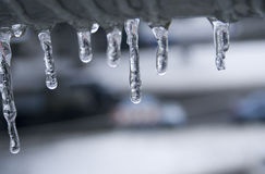 Icicles. Blue icicles drooping on a winter day stock images