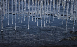Icicles. Hanging over a rim of stony embankment Royalty Free Stock Photo
