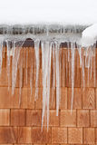 Icicles Stock Image