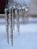 Icicles. Winter & frost stock image