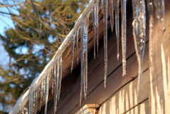 icicles Стоковые Изображения