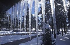 Icicles. Hanging from a roof Royalty Free Stock Image