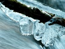 Icicles above forest stream Stock Image