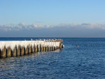 Free Icicles And Seagulls On A Pier Stock Photos - 392293