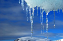 Icicles antarctica. Frozen ice in antarctica, blue sky Royalty Free Stock Images