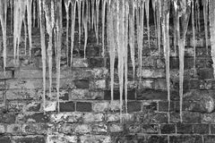 Icicles on a background of wall Royalty Free Stock Photo