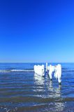 Icicles at the Baltic Sea Stock Photos