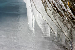 Icicles in the black forest, germany Stock Image