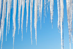 Icicles on blue Royalty Free Stock Photo