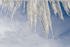 Icicles on blue background Royalty Free Stock Image
