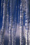 Icicles & blue sky. Frozen icicles with blue sky reflection Royalty Free Stock Photos