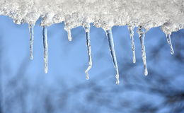 Icicles on a blue sky Stock Photo