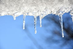 Icicles on a blue sky stock images