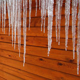 Icicles on a Cabin. Icicles hang from a wood cabin in on a chilly winter day in northern Illinois Royalty Free Stock Image