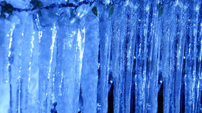 Icicles in close-up Stock Photos