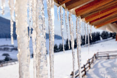 Icicles close-up Royalty Free Stock Images