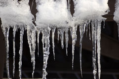 Icicles Royalty Free Stock Photography