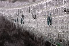 Icicles on a clothesline Royalty Free Stock Photography