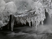 Icicles on the creek. Royalty Free Stock Images
