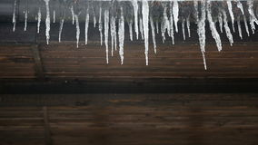 Icicles drip from a wooden stock video footage