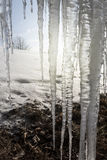 Icicles - Frozen Water Detail. With Winter Landscape Field Covered with Snow stock images