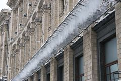 Icicles on a grid under the building at winter Royalty Free Stock Image