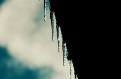 Icicles From Gutter Royalty Free Stock Image