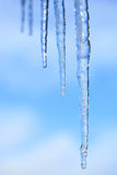 Icicles hanging against a blue sky Royalty Free Stock Photography