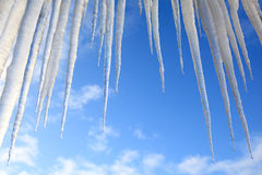 Icicles hanging against a blue sky Royalty Free Stock Image