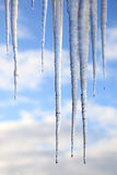 Icicles hanging against a blue sky Stock Images